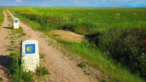 Camino Frances
